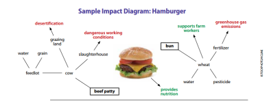 impacts of a burger